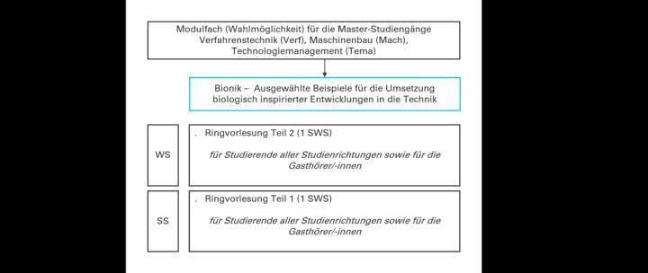 """Übersicht zum Modul """"Bionik"""" (c)"""