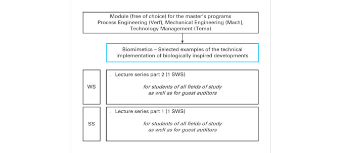 "Overview about module ""Biomimetics"" (c)"